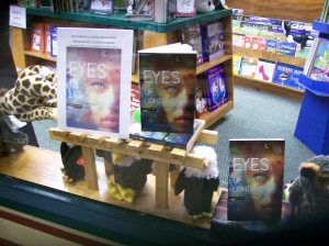 Window display at Book World! Are those stuffed Thunderbirds underneath??  :-)